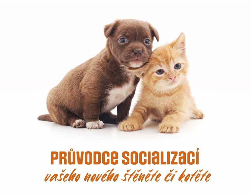 Průvodce socializací Vašeho nového štěněte nebo kotěte